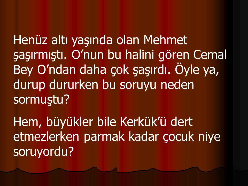 Henüz altı yaşında olan Mehmet şaşırmıştı. O'nun bu halini gören Cemal Bey O'ndan daha çok şaşırdı.