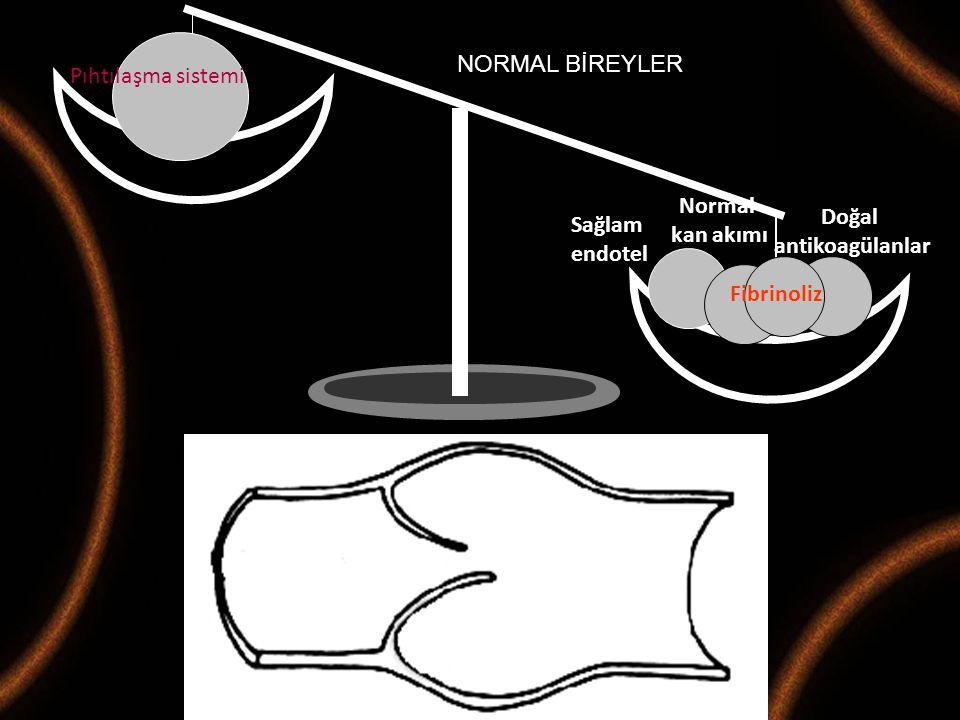 Maternal Fetal Tıp ve Perinatoloji Derneği 2008-M.Demir Pıhtılaşma sistemi Sağlam endotel Normal kan akımı Fibrinoliz Doğal antikoagülanlar NORMAL BİR
