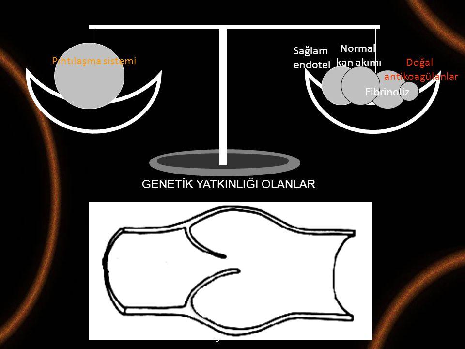 Maternal Fetal Tıp ve Perinatoloji Derneği 2008-M.Demir Pıhtılaşma sistemi Sağlam endotel Normal kan akımı Fibrinoliz Doğal antikoagülanlar GENETİK YA