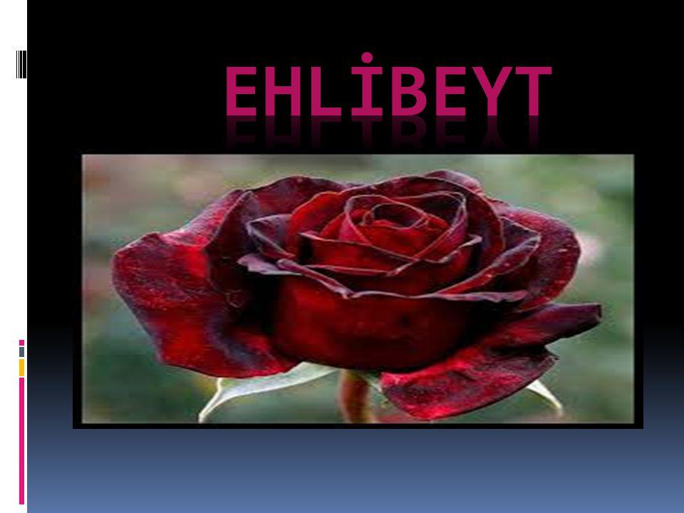 Ehl-i beyt nedir .Ehl-i Beyt, Hz. Rasûlullah (s.a.v) Efendimizin ailesi ve evlâtlarıdır.