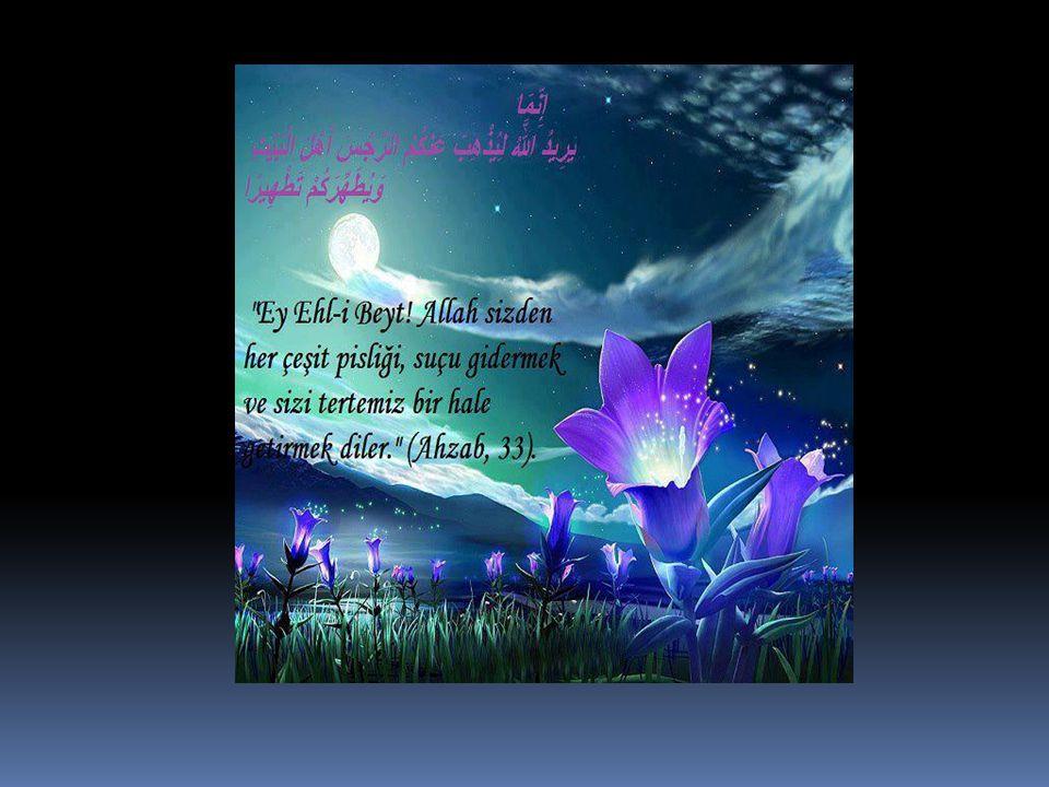 Allahu Teâlâ'yı seven kimse, elbette O'nun sevdiklerini de sever.