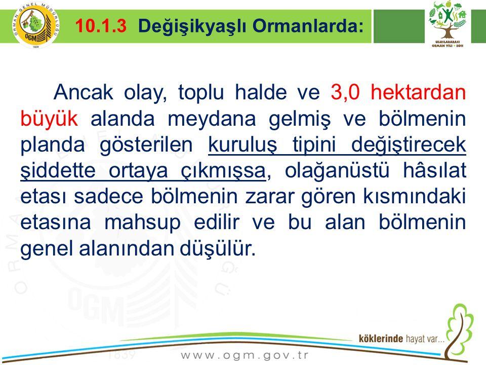 16/12/2010 Kurumsal Kimlik 17 Ancak olay, toplu halde ve 3,0 hektardan büyük alanda meydana gelmiş ve bölmenin planda gösterilen kuruluş tipini değişt