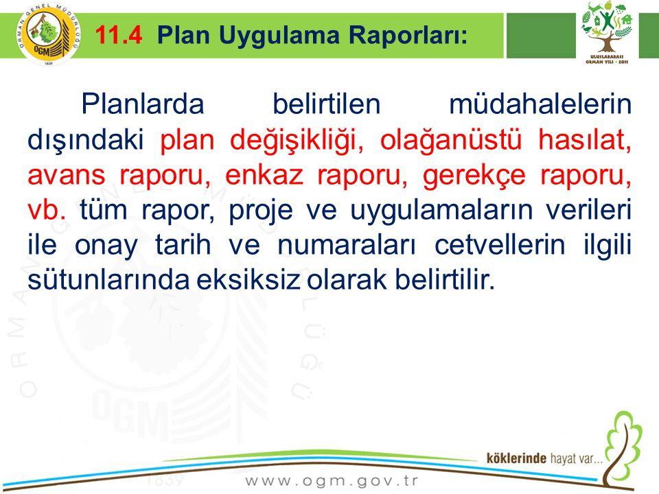 16/12/2010 Kurumsal Kimlik 44 Planlarda belirtilen müdahalelerin dışındaki plan değişikliği, olağanüstü hasılat, avans raporu, enkaz raporu, gerekçe r