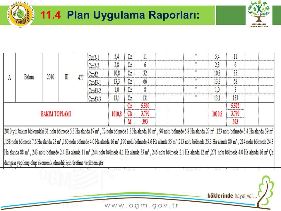 16/12/2010 Kurumsal Kimlik 46 11.4 Plan Uygulama Raporları: