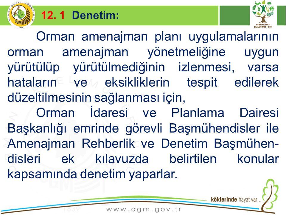 16/12/2010 Kurumsal Kimlik 55 12. 1 Denetim: Orman amenajman planı uygulamalarının orman amenajman yönetmeliğine uygun yürütülüp yürütülmediğinin izle