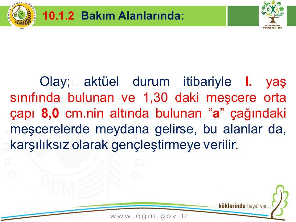 16/12/2010 Kurumsal Kimlik 7 10.1.2 Bakım Alanlarında: Olay; aktüel durum itibariyle I. yaş sınıfında bulunan ve 1,30 daki meşcere orta çapı 8,0 cm.ni