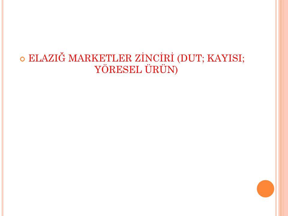 12.AĞIN EKOTURİZM PROJESİ 13.BASKİL KAYISI MERKEZİ PROJESİ 14.
