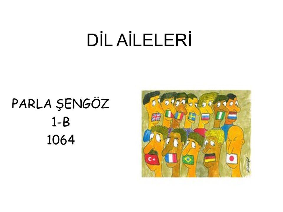 DİL AİLELERİ PARLA ŞENGÖZ 1-B 1064