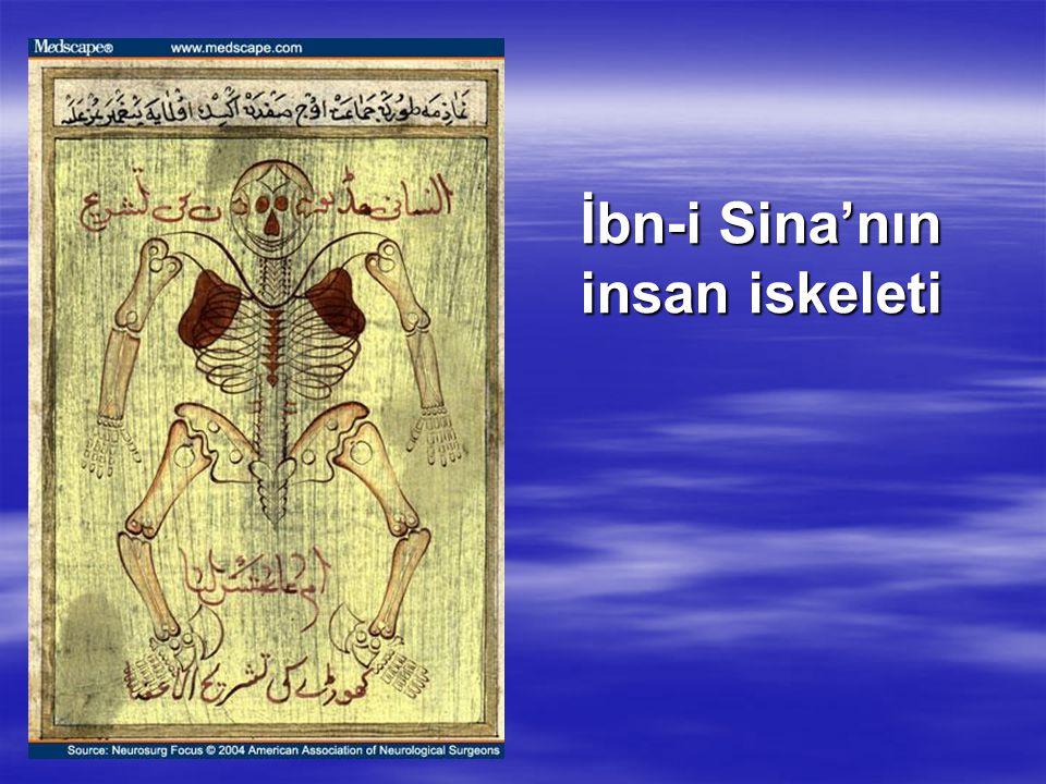 İbn-i Sina'nın insan iskeleti