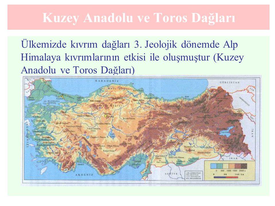 Kuzey Anadolu ve Toros Dağları Ülkemizde kıvrım dağları 3. Jeolojik dönemde Alp Himalaya kıvrımlarının etkisi ile oluşmuştur (Kuzey Anadolu ve Toros D