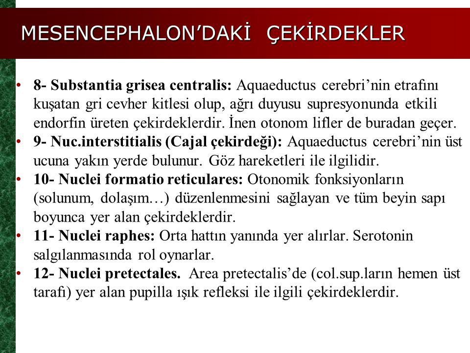 MESENCEPHALON'DAKİ ÇEKİRDEKLER 8- Substantia grisea centralis: Aquaeductus cerebri'nin etrafını kuşatan gri cevher kitlesi olup, ağrı duyusu supresyon