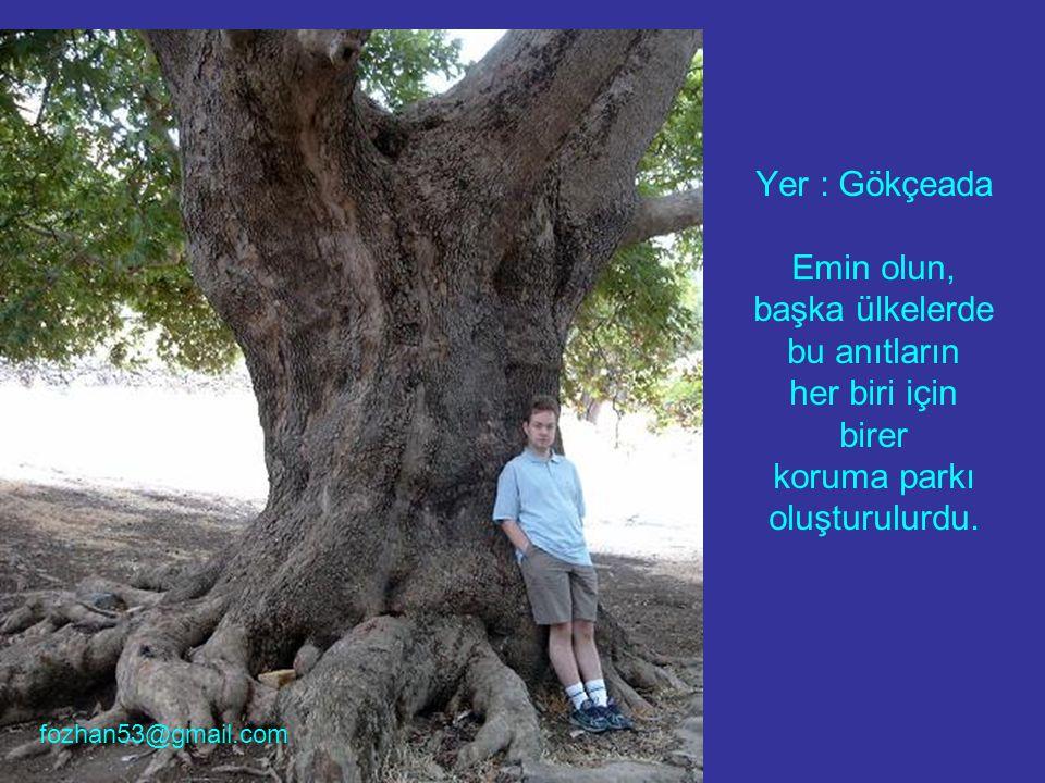 Yer : Gökçeada Emin olun, başka ülkelerde bu anıtların her biri için birer koruma parkı oluşturulurdu. fozhan53@gmail.com