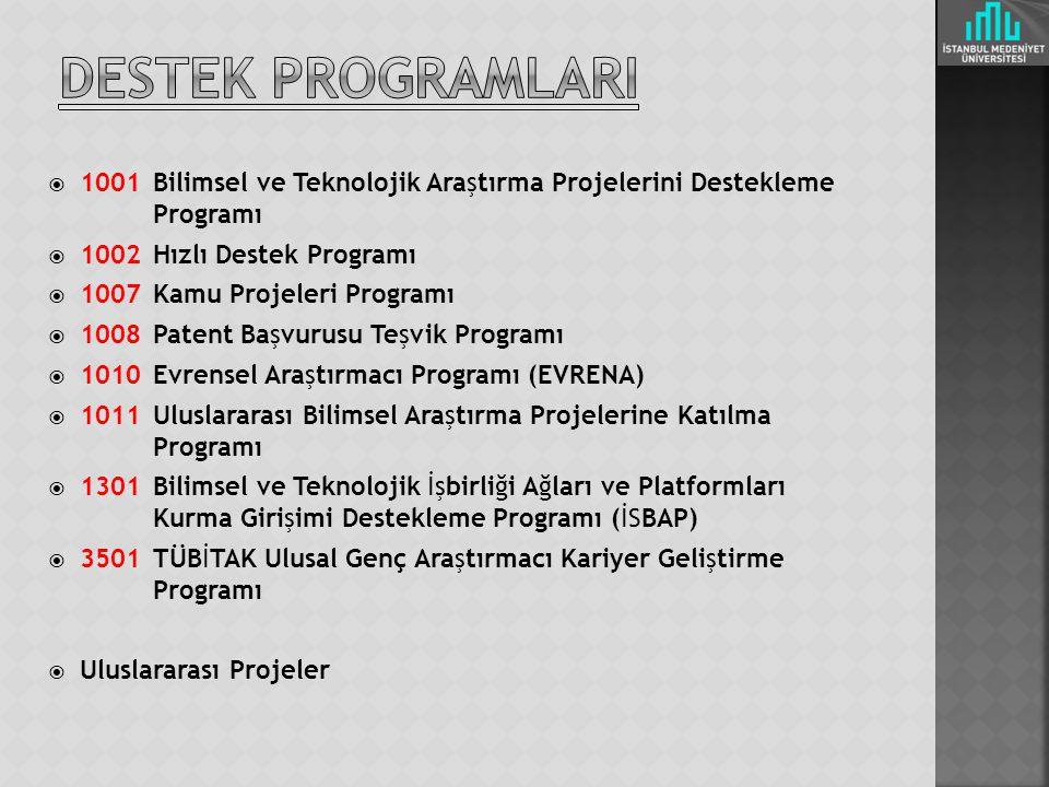  1001 Bilimsel ve Teknolojik Araştırma Projelerini Destekleme Programı  1002 Hızlı Destek Programı  1007 Kamu Projeleri Programı  1008 Patent Başvurusu Teşvik Programı  1010 Evrensel Araştırmacı Programı (EVRENA)  1011 Uluslararası Bilimsel Araştırma Projelerine Katılma Programı  1301 Bilimsel ve Teknolojik İşbirliği Ağları ve Platformları Kurma Girişimi Destekleme Programı (İSBAP)  3501 TÜBİTAK Ulusal Genç Araştırmacı Kariyer Geliştirme Programı  Uluslararası Projeler