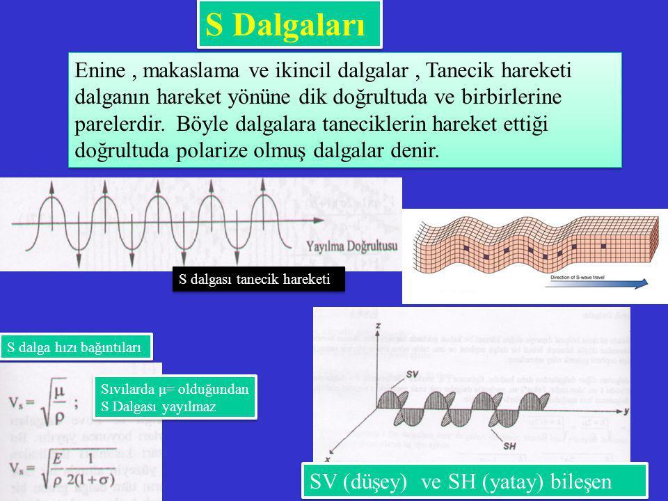 S Dalgaları Enine, makaslama ve ikincil dalgalar, Tanecik hareketi dalganın hareket yönüne dik doğrultuda ve birbirlerine parelerdir. Böyle dalgalara