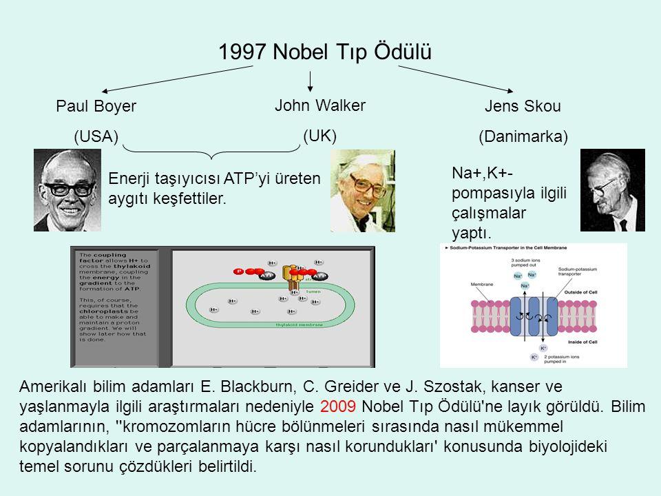 1997 Nobel Tıp Ödülü Paul Boyer (USA) John Walker (UK) Jens Skou (Danimarka) Enerji taşıyıcısı ATP'yi üreten aygıtı keşfettiler. Na+,K+- pompasıyla il