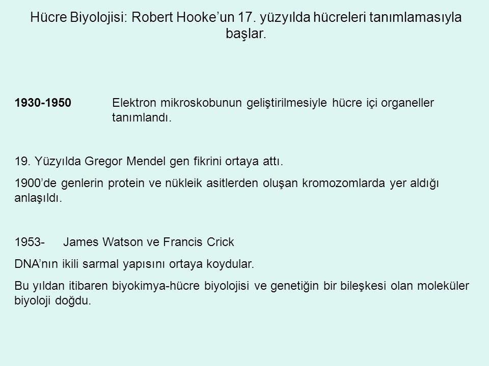 Hücre Biyolojisi: Robert Hooke'un 17. yüzyılda hücreleri tanımlamasıyla başlar. 1930-1950Elektron mikroskobunun geliştirilmesiyle hücre içi organeller