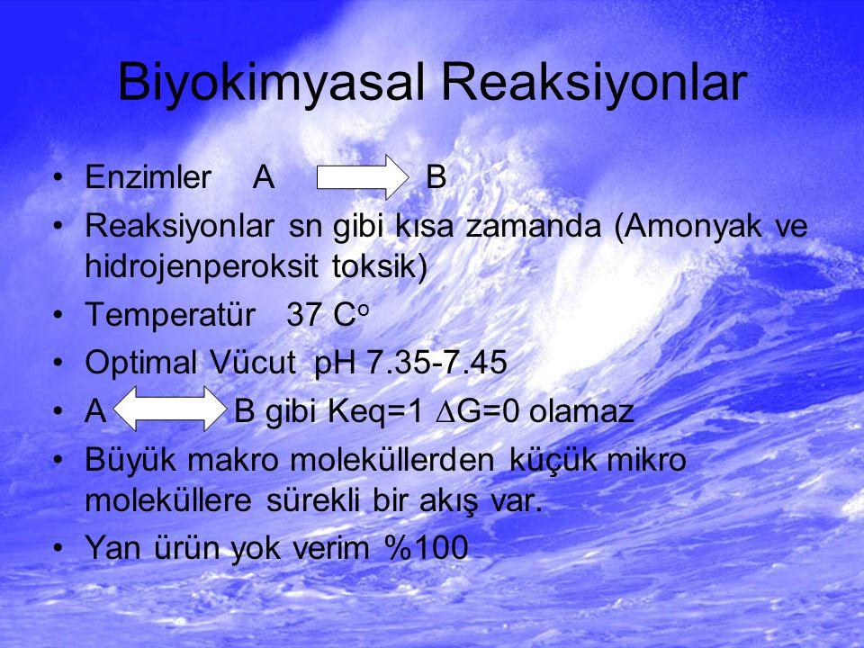 Biyokimyasal Reaksiyonlar Enzimler A B Reaksiyonlar sn gibi kısa zamanda (Amonyak ve hidrojenperoksit toksik) Temperatür 37 C o Optimal Vücut pH 7.35-