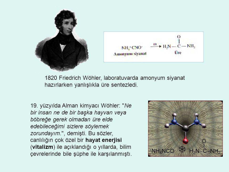 1820 Friedrich Wöhler, laboratuvarda amonyum siyanat hazırlarken yanlışlıkla üre sentezledi. + NH 4 NCO -  H 2 N  C  NH 2 O 19. yüzyılda Alman kimy