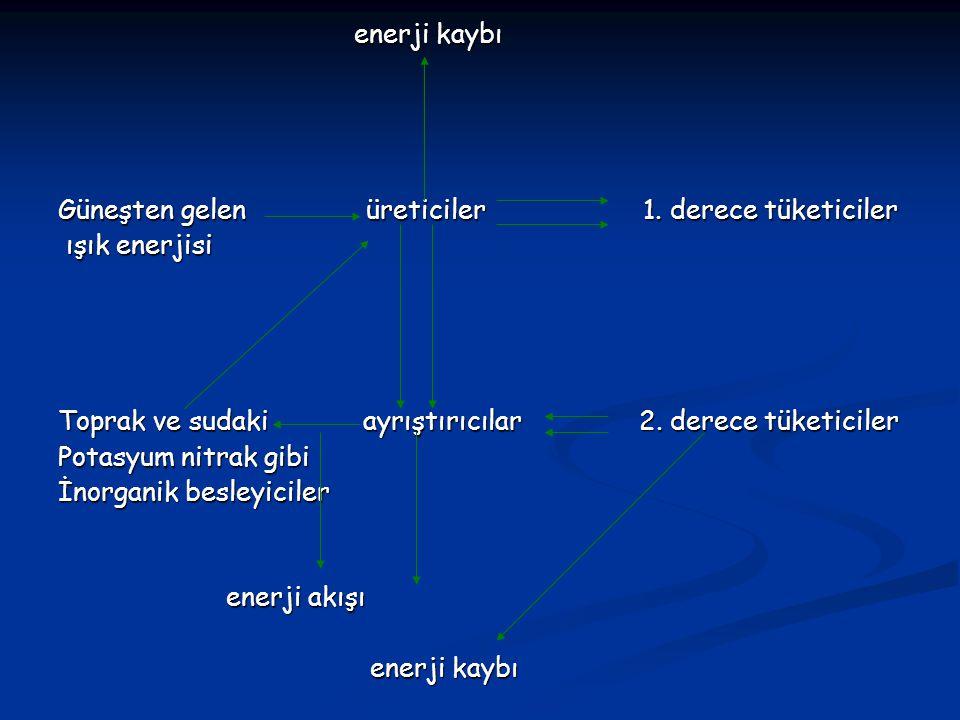 enerji kaybı enerji kaybı Güneşten gelen üreticiler 1.