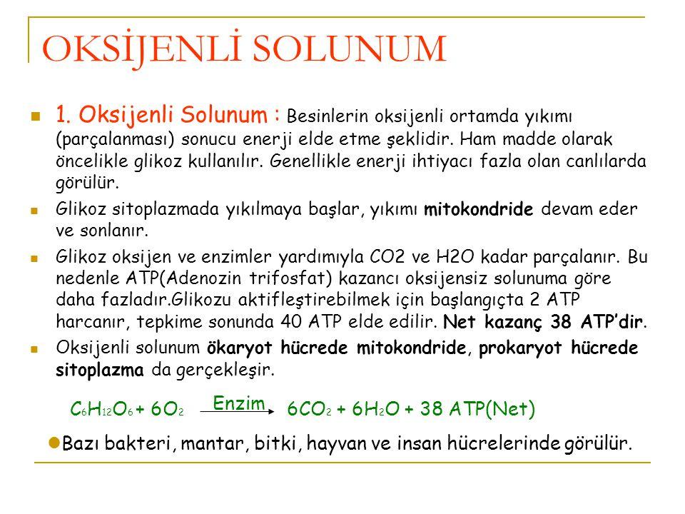 OKSİJENLİ SOLUNUM 1.