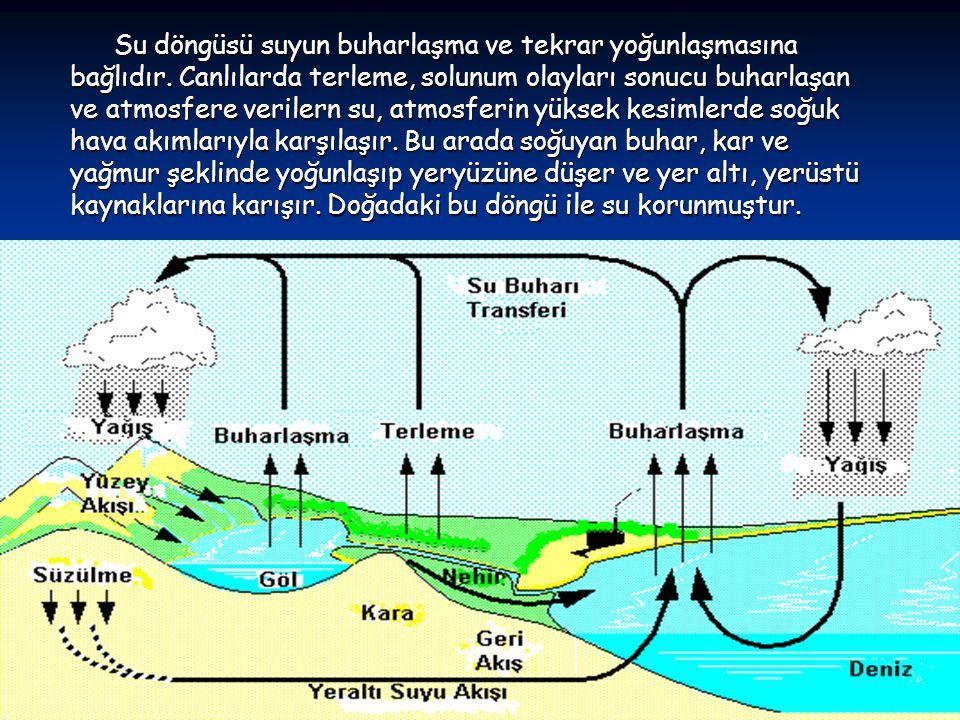 Su döngüsü suyun buharlaşma ve tekrar yoğunlaşmasına bağlıdır.