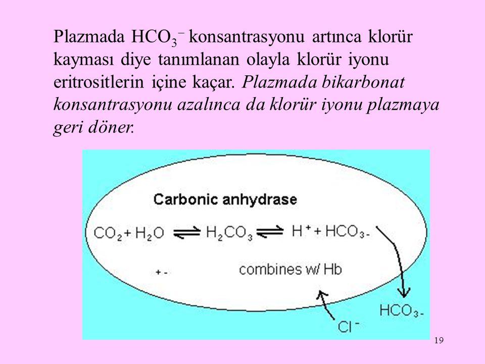 19 Plazmada HCO 3  konsantrasyonu artınca klorür kayması diye tanımlanan olayla klorür iyonu eritrositlerin içine kaçar. Plazmada bikarbonat konsantr