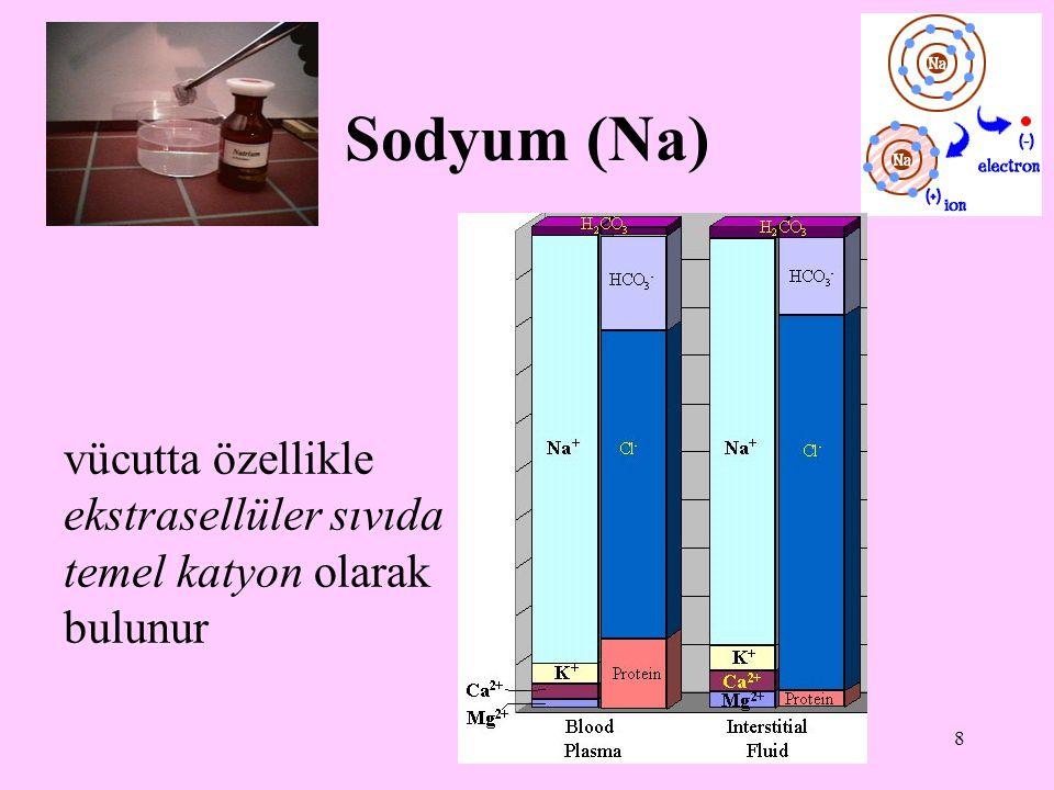 8 Sodyum (Na) vücutta özellikle ekstrasellüler sıvıda temel katyon olarak bulunur