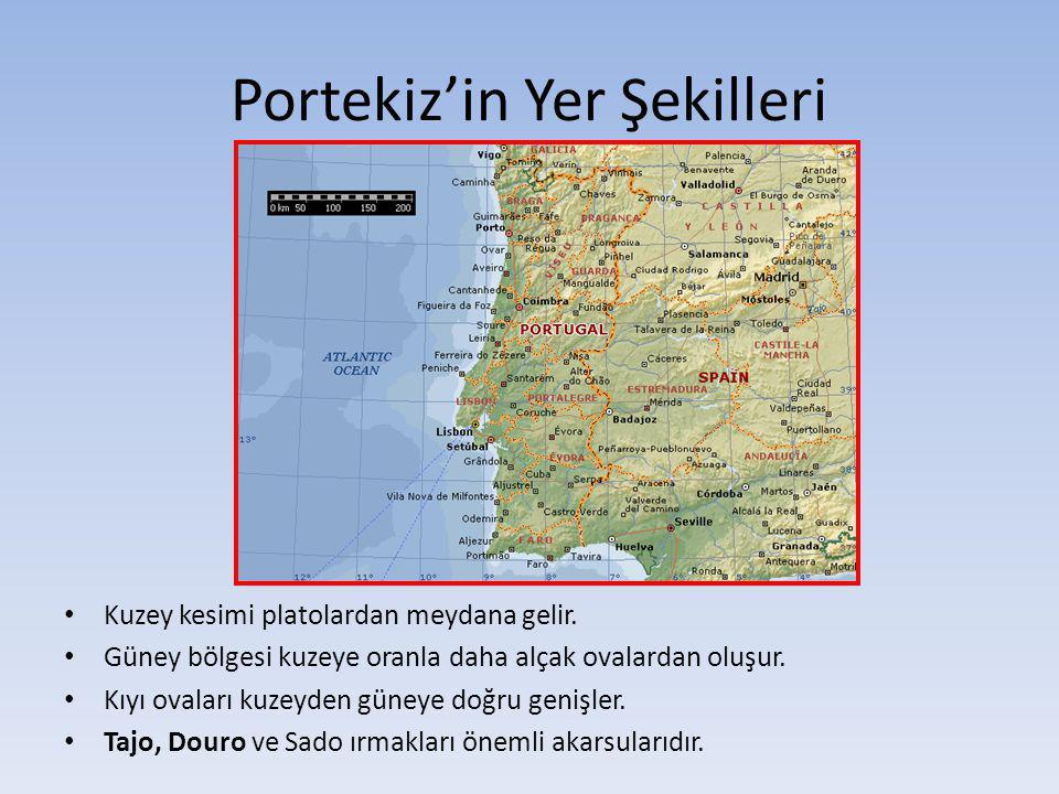 Portekiz'in Yer Şekilleri Kuzey kesimi platolardan meydana gelir. Güney bölgesi kuzeye oranla daha alçak ovalardan oluşur. Kıyı ovaları kuzeyden güney