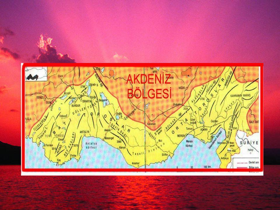 Adana Bölümü nde sanayi daha fazla gelişmiştir.