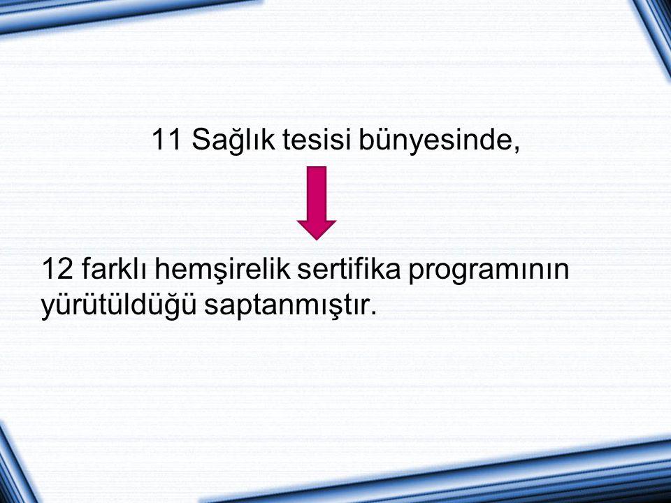 11 Sağlık tesisi bünyesinde, 12 farklı hemşirelik sertifika programının yürütüldüğü saptanmıştır.