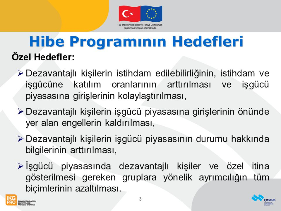 Hibe Programının Hedefleri Özel Hedefler:  Dezavantajlı kişilerin istihdam edilebilirliğinin, istihdam ve işgücüne katılım oranlarının arttırılması v