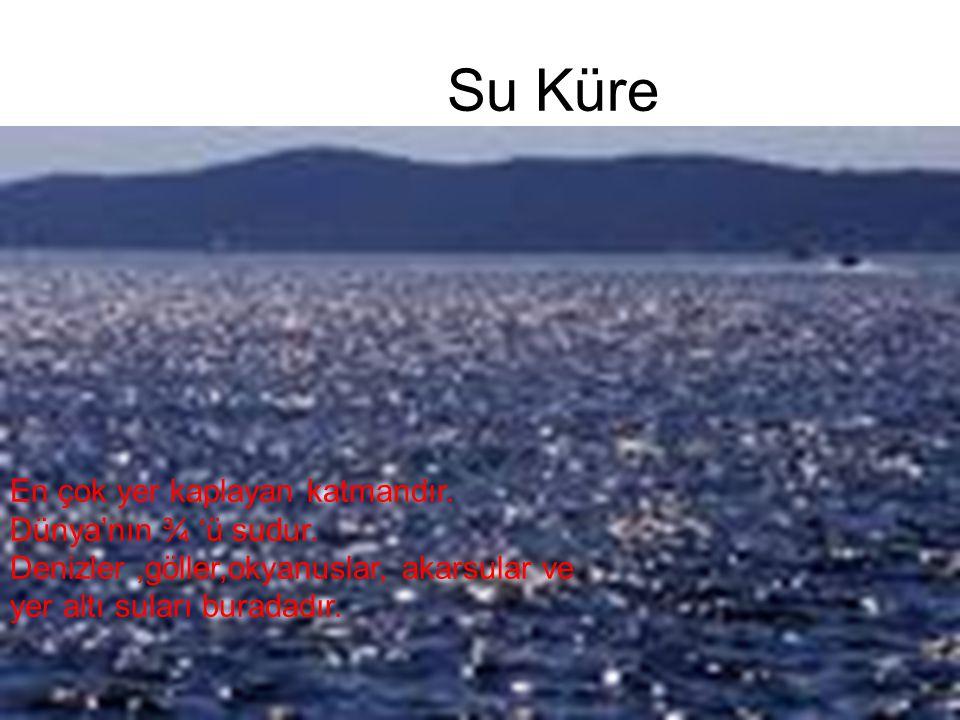 15 Su Küre En çok yer kaplayan katmandır. Dünya'nın ¾ 'ü sudur. Denizler,göller,okyanuslar, akarsular ve yer altı suları buradadır.