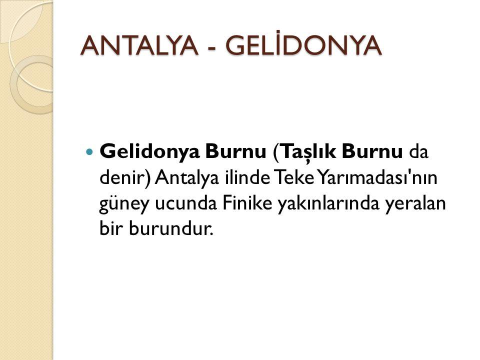 ANTALYA - GEL İ DONYA Gelidonya Burnu (Taşlık Burnu da denir) Antalya ilinde Teke Yarımadası nın güney ucunda Finike yakınlarında yeralan bir burundur.