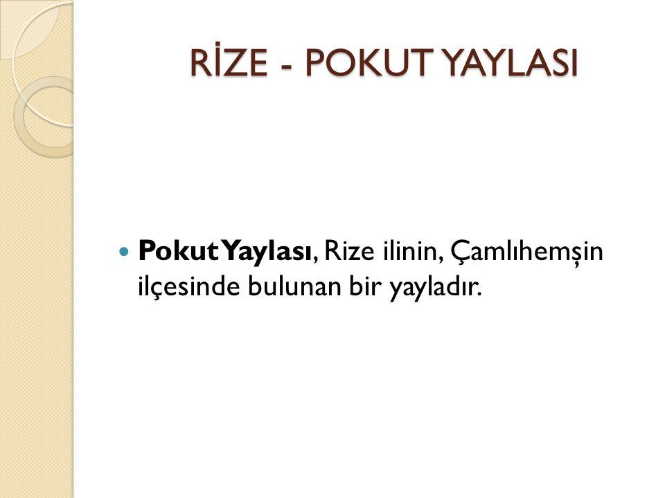 Pokut Yaylası, Rize ilinin, Çamlıhemşin ilçesinde bulunan bir yayladır.