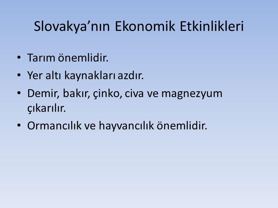 Slovakya'nın Ekonomik Etkinlikleri Tarım önemlidir. Yer altı kaynakları azdır. Demir, bakır, çinko, civa ve magnezyum çıkarılır. Ormancılık ve hayvanc