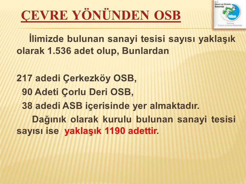 İlimizde bulunan sanayi tesisi sayısı yaklaşık olarak 1.536 adet olup, Bunlardan 217 adedi Çerkezköy OSB, 90 Adeti Çorlu Deri OSB, 38 adedi ASB içeris