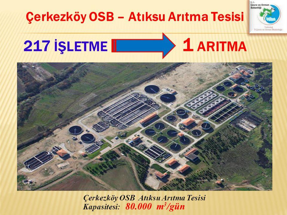 Çerkezköy OSB Atıksu Arıtma Tesisi Kapasitesi: 80.000 m 3 /gün Çerkezköy OSB – Atıksu Arıtma Tesisi 217 İŞLETME 1 ARITMA