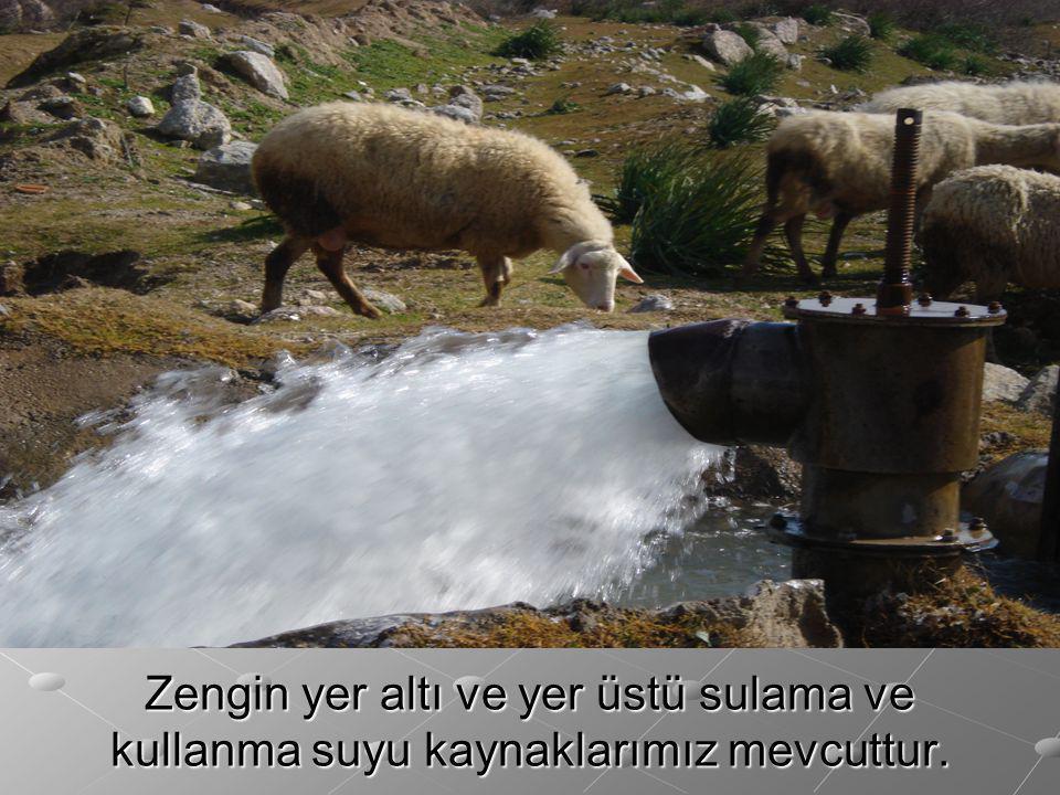 Zengin yer altı ve yer üstü sulama ve kullanma suyu kaynaklarımız mevcuttur.
