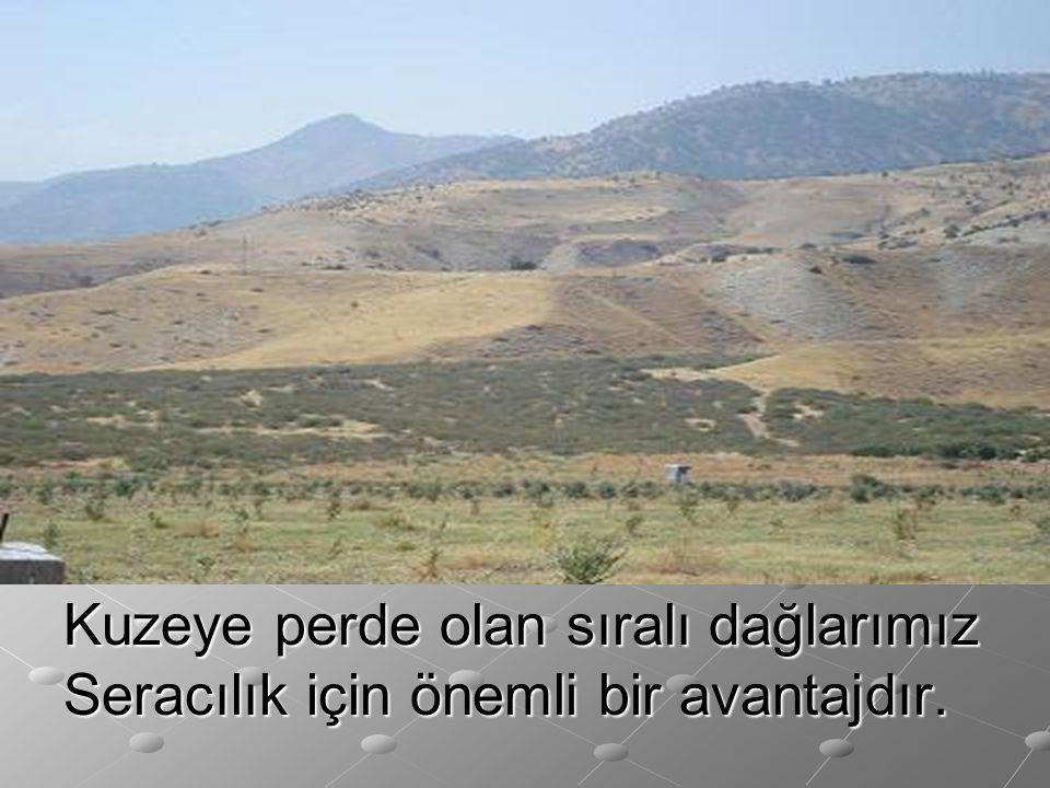 Kuzeye perde olan sıralı dağlarımız Seracılık için önemli bir avantajdır.