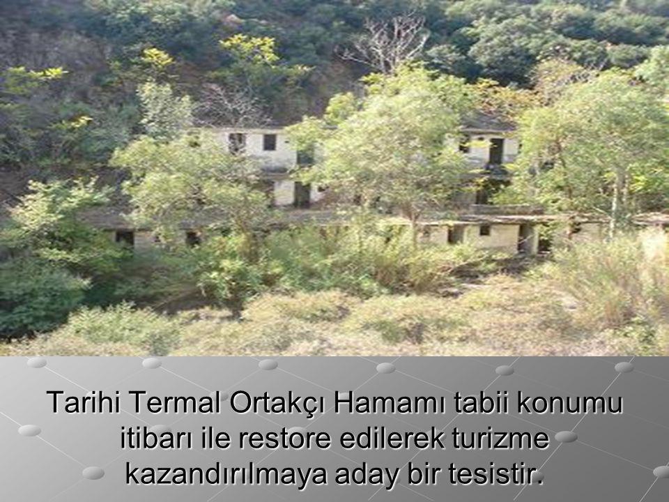 Tarihi Termal Ortakçı Hamamı tabii konumu itibarı ile restore edilerek turizme kazandırılmaya aday bir tesistir.