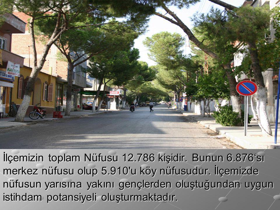 İlçemizin toplam Nüfusu 12.786 kişidir. Bunun 6.876'sı merkez nüfusu olup 5.910'u köy nüfusudur. İlçemizde nüfusun yarısına yakını gençlerden oluştuğu