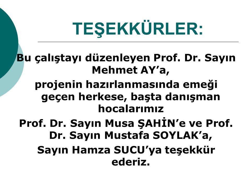 TEŞEKKÜRLER: Bu çalıştayı düzenleyen Prof. Dr. Sayın Mehmet AY'a, projenin hazırlanmasında emeği geçen herkese, başta danışman hocalarımız Prof. Dr. S