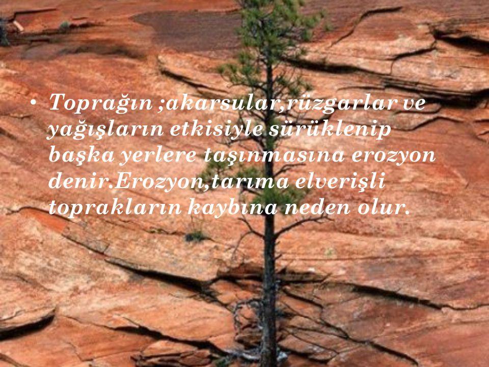 Toprağın ;akarsular,rüzgarlar ve yağışların etkisiyle sürüklenip başka yerlere taşınmasına erozyon denir.Erozyon,tarıma elverişli toprakların kaybına
