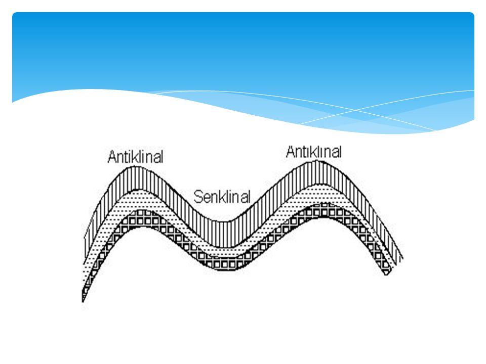  Ülkemizde Yıldız Dağları, Kuzey Anadolu Dağları, Karasu–Aras Dağları ve Toroslar ile Ergene Havzası, İç Anadolu Düzlükleri kıvrılma sonucunda meydana gelmiştir.