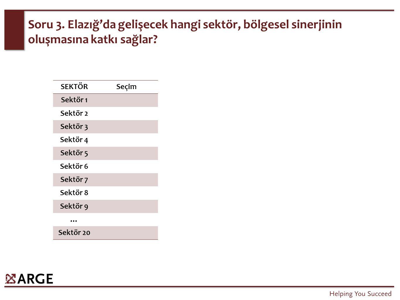 Soru 3. Elazığ'da gelişecek hangi sektör, bölgesel sinerjinin oluşmasına katkı sağlar.