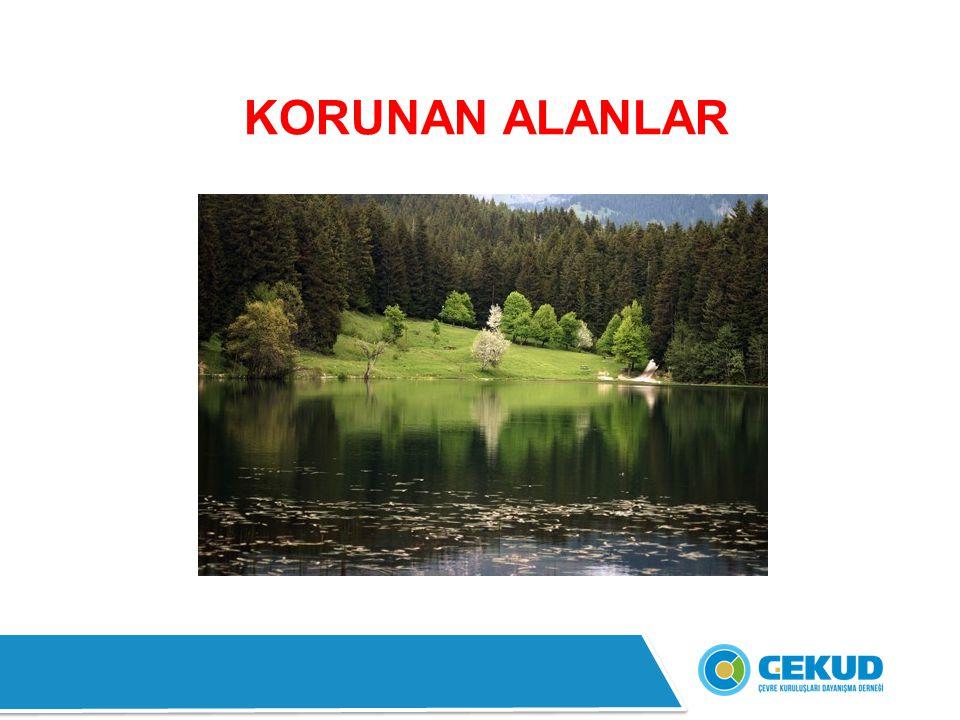 8- Boğazköy - Alacahöyük Milli Parkı : İç Anadolu Bölgesi'nde, Çorum ili sınırları içindedir.