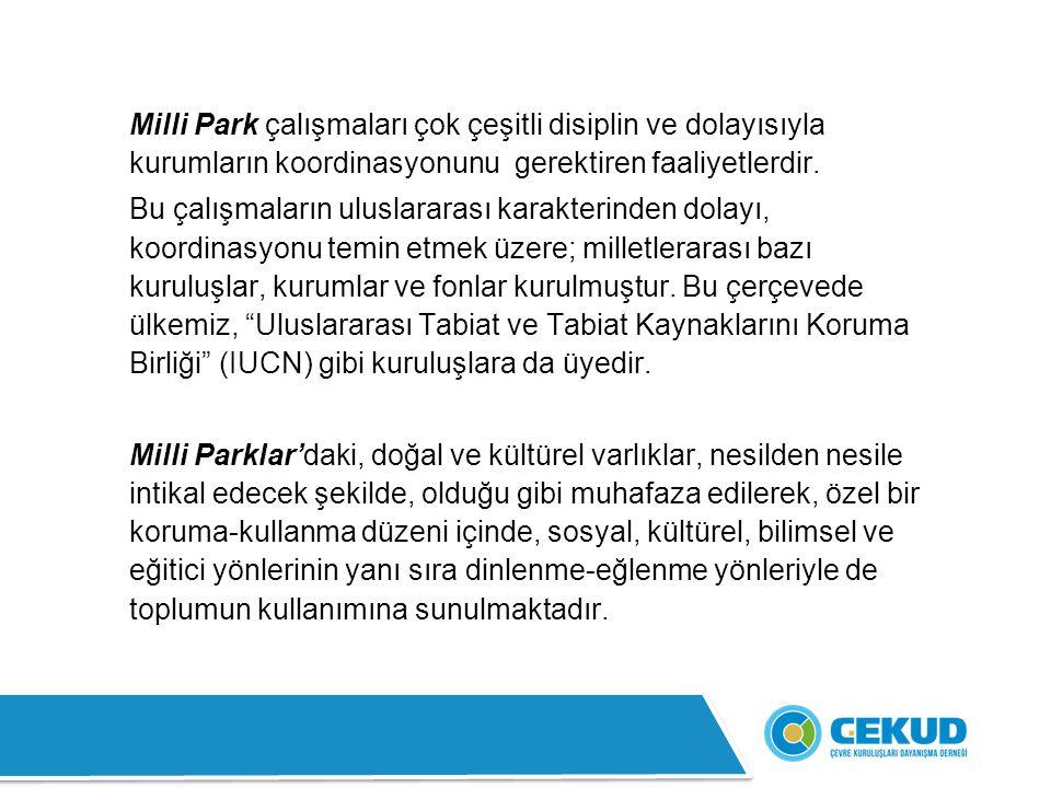 31- Soğuksu Milli Parkı: Anadolu Bölgesi'nde, Ankara ili sınırları içindedir.