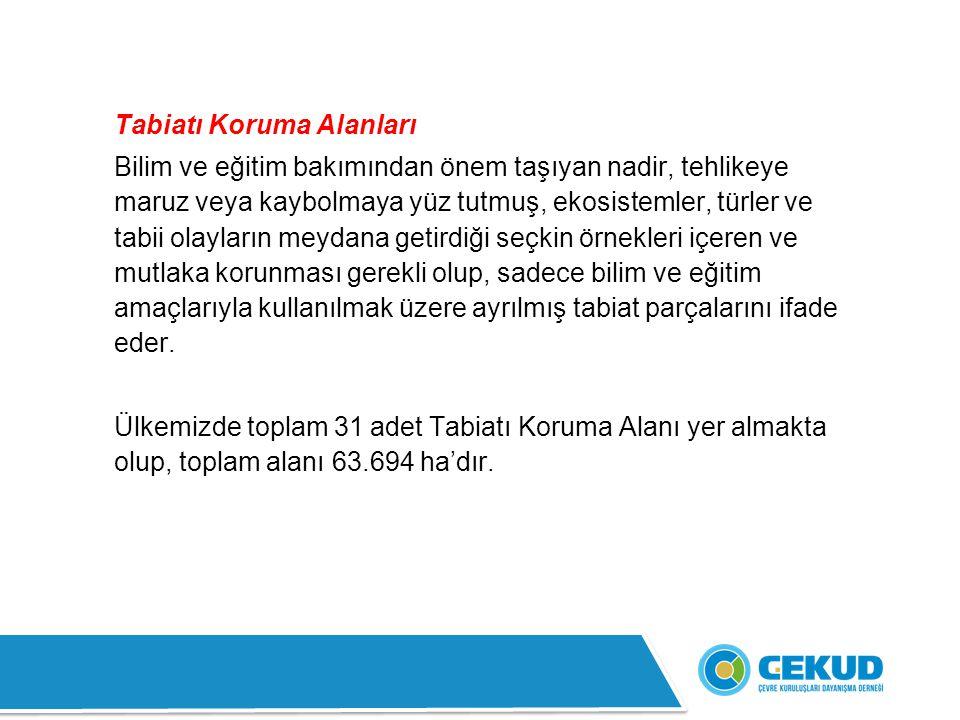 4- Altındere Vadisi Milli Parkı: Doğu Karadeniz Bölgesi'nde Trabzon ili sınırları içinde yer alır.
