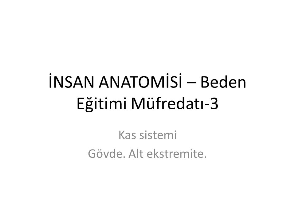 İNSAN ANATOMİSİ – Beden Eğitimi Müfredatı-3 Kas sistemi Gövde. Alt ekstremite.