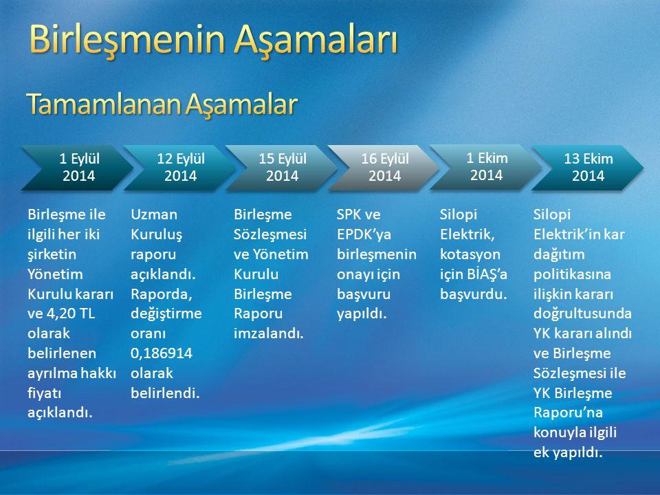 SPK, EPDK ve BİAŞ'tan onay alınması.
